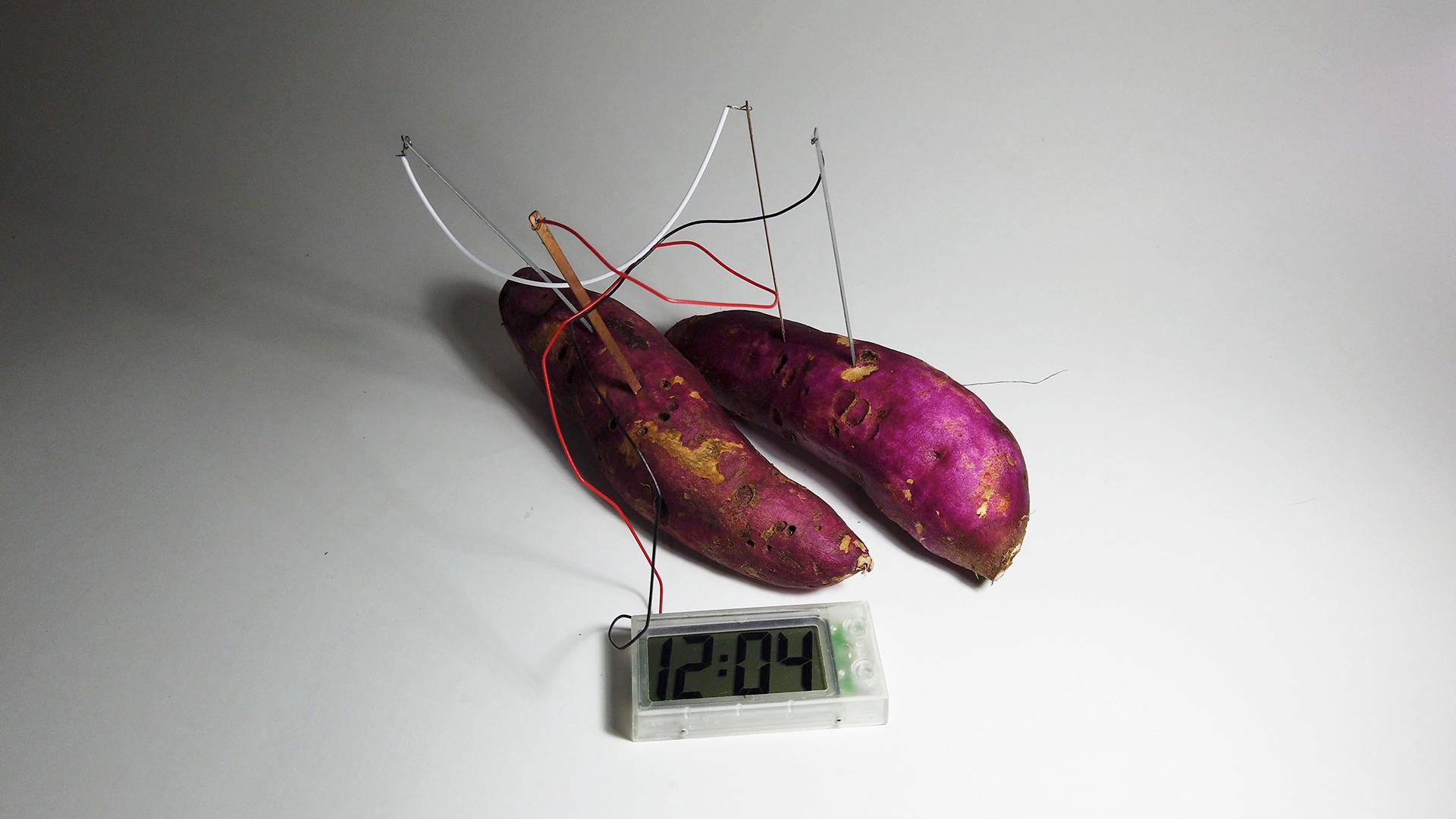 Denilson Baniwa - 1 O tempo natural da batata doce