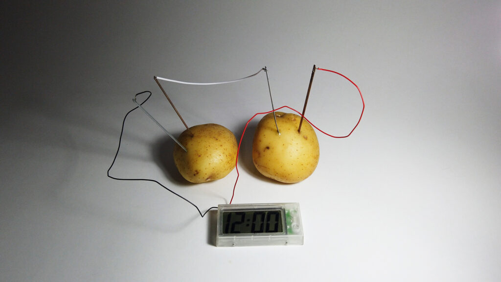 Denilson Baniwa - 4 O tempo natural da batata.web