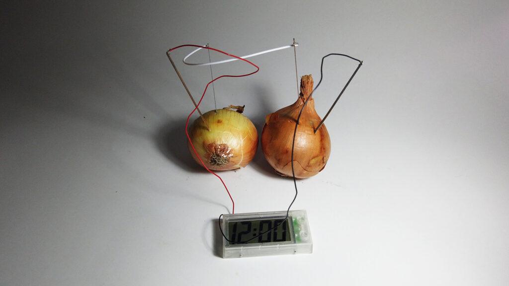 Denilson Baniwa - 5 O tempo natural da cebola.web