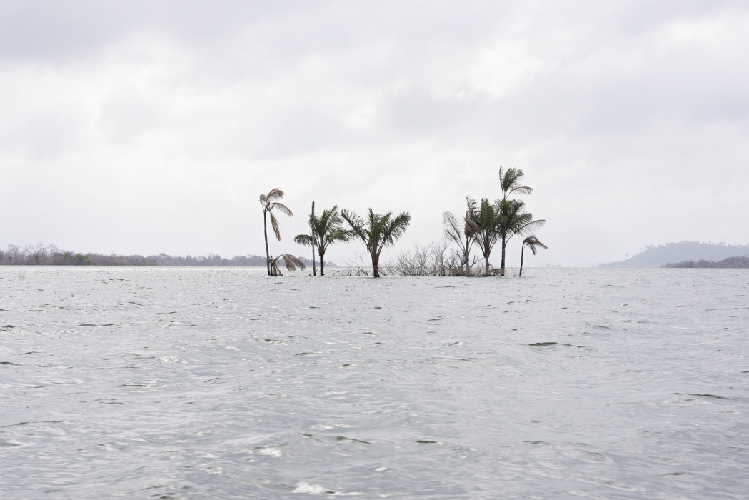 Dead Water, Participants & Marilene Ribeiro, Drowned Island