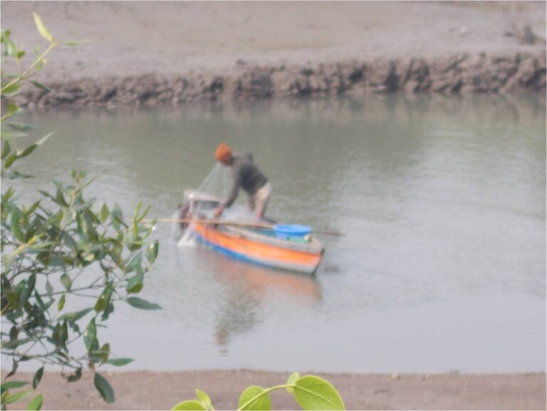 TAPESTRY project, Koli fishers photovoice: Picture 29