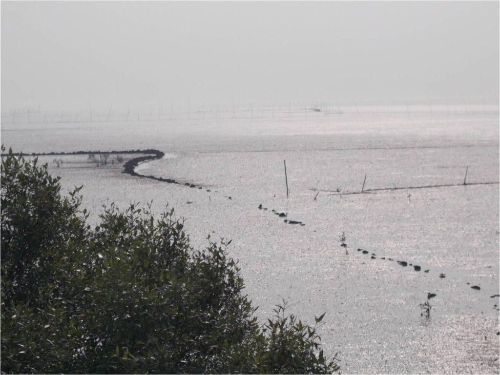 TAPESTRY project, Koli fishers photovoice: Picture 6